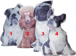 Kare Design :: Poduszka Pies Dogs Out bulldog, pudel, mops (36178)
